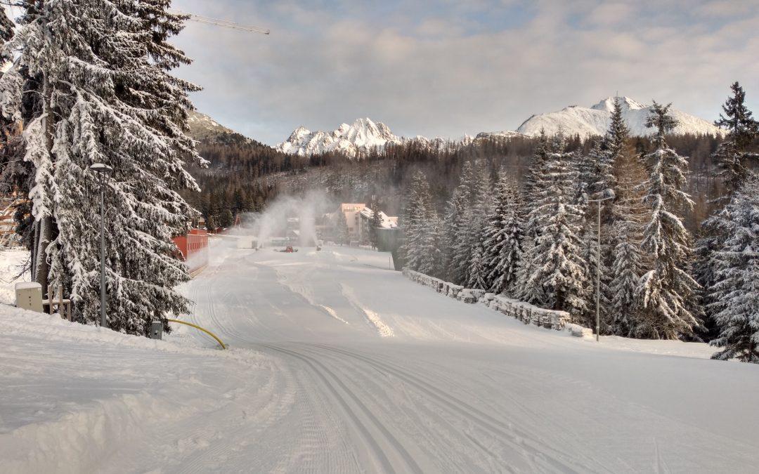 Tréning – lyže